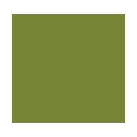 logo-Singular-envit